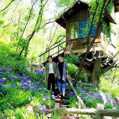 济南红叶谷香巴拉树屋
